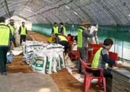 의왕시, 친환경 우렁쌀 생산 가능해진다