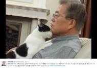 문재인 대통령 'SNS 소통정치' 지속… 퍼스트캣·독과 청와대생활 등