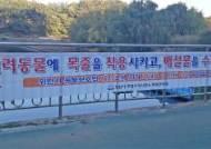 성남시, 반려견 목줄 미착용 단속 강화…탄천 순찰조 편성