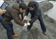 인천시, 영흥발전 '석탄 파문' 긴급합동조사단 구성