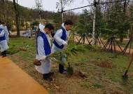 남양주시, 다산2동 황금산 편백나무 산책로 조성