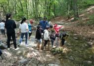 양평군, 인성함양 프로그램 관계놀이'숲에서 놀자' 개최