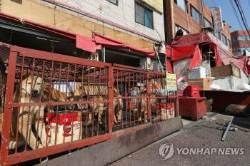 성남 모란시장, 마지막 개 도축장 철거한다