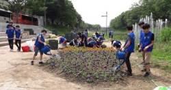바다살리기국민운동본부 안산시지부, 안산 화정천에 야생화 꽃길 조성