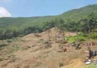 용인시 행정오류 탓… 법화산 녹지, 난개발에 결국 사라진다