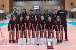 수원시청, 실업배구연맹 선수권 2연패…화성시청은 남자부 우승