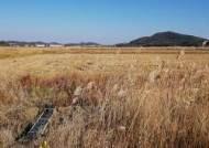[긴급진단- 목타는 시화·화옹지구] 만성 물부족에 소금밭 전락...애타는 농민들