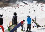 雪레는 스키시즌