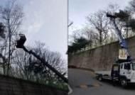 인천도시공사, 지역주민 안전 위한 위험수목 제거