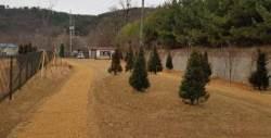 김포시, 하성근린공원에 반려동물 전용공원 조성 완료