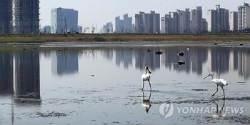 인천시, 하수처리 운영적자 '매립지 돈'으로 메꿨다