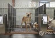 """유기동물보호 못하는 수의사회 위탁운영 보호소… 인천시 """"책임 없다"""" 뒷짐만"""