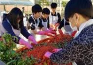 학생 스스로 수확 및 기부까지, 관인중․고등학교'효사랑 봉사대'학생들 참교육 실천