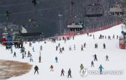 충돌사고로 다친 스키어, 스키장 상대 손배소 패소