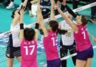 흥국생명, 프로배구 V리그 여자부 3연승 질주...2위 6점차 벌려