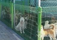 수원시 동물보호센터 '예산 부족'으로 건립사업 난항