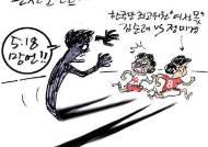 [최경락 만평] 관전포인트…