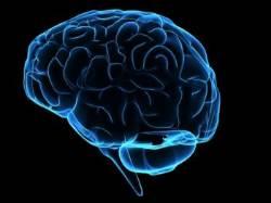 '알츠하이머질환' 의학적 치료 통해 전염될 수 있다?