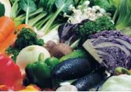 '섬유질' 섭취, 장내 세균-당뇨병 퇴치 돕는다