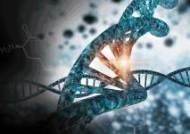 머크, 제노웨이와 설치류 모델 위한 CRISPR/Cas9 전략적 제휴