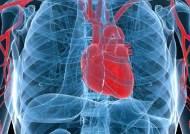 '관상동맥내 칼슘 농도' 보면 향후 심장질환 발병 위험 알 수 있다