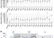 부작용 줄이는 수면유도 동물성 단백질 '트레오닌' 탁월