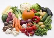 저지방 식단, 여성 건강에 도움 된다고 밝혀져