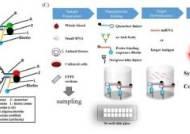 피 한 방울로 알츠하이머 치매 조기 진단…新개념 진단키트 개발