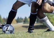 축구선수들 뇌질환 사망률 일반인보다 3배이상 높아