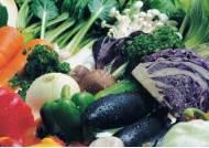 '과일·채소' 먹으면 대장직장암 예방 이유 있다