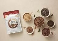 농심켈로그, 5가지 곡물 그대로 구워낸 '알알이 구운 통곡물' 출시