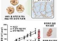 국내 연구진, 폐암 유발 단백질 잡는 간섭RNA 나노구조체 개발