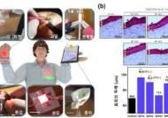 부착형 OLED로 피부 콜라겐 합성…'재생' 효과 확인