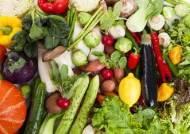 채식 많이 하면 뇌졸중 발병 위험 줄어