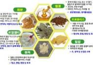"""면역력 떨어지는 환절기…""""'항산화ㆍ항염증 효과' 양봉산물로 건강 지키세요"""""""
