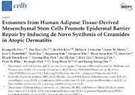 엑소코바이오, 줄기세포 엑소좀 기반 피부재생·리페어 연구결과 발표