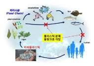 수생 생태계 연쇄 오염 일으키는 페트병…'플라스틱 분해' 식물성 플랑크톤 개발