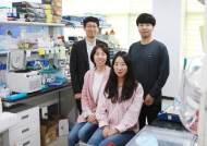 KAIST, 다양한 바이러스 감염병 쉽고 빠르게 찾아내는 진단기술 개발