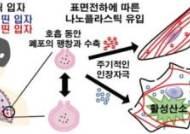 전남대 연구팀, '초미세 플라스틱 표면전하가 폐 손상' 규명