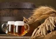 맥주효모-캐슈넛 등 모발 관리에 도움 되는 이유