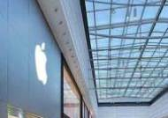애플, 르네사스 자회사 인수 추진…디스플레이 자체 개발하나