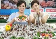 [사진]롯데마트, 금어기 후 첫 어획한 생물 오징어
