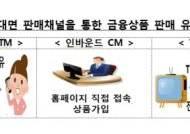 """금감원 """"비대면 보험·카드 불완전판매 집중점검"""""""