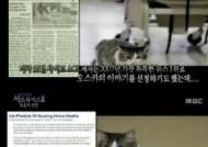 고양이 오스카, 죽음의 냄새를 맡는 '저승사자의 현신'
