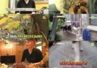 '동물농장' 빨래 도둑 고양이 마루, 빨래를 훔치는 이유는?