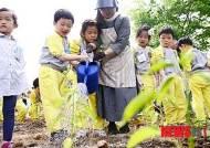 '도시농업체험장 모종심기 행사'