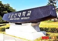 군산대 2014학년도 수시 1차 경쟁률 4.82대 1