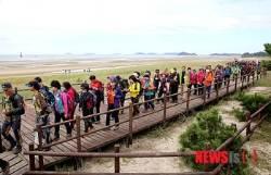 태안 해변길 걷기 '인기'