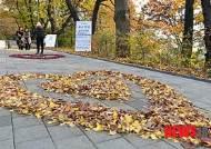 예쁜 낙엽하트