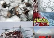 한국보도사진전-시사스토리 가작 한국최초 북극항로 항해 37일의 기록